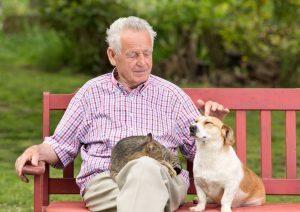 7-Beneficios-de-tener-mascotas-en-la-vejez
