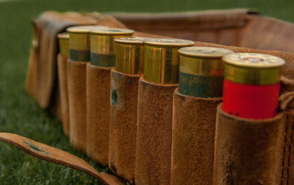 cartridges-1761236_1920